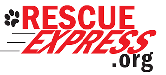 The Rescue Express – V8